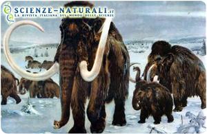 Mammuth 2016 clonazione
