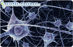 cervello depressione impulsi pacemaker