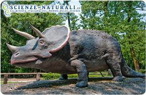 Gryphoceratops morrisoni