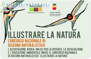 Concorso di disegno Naturalistico: Illustrare la Natura