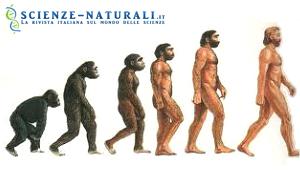 evoluzione della psiche
