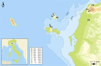 Luoghi del Paleolitico Superiore e siti Mesolitici nelle Isole Egadi e nella Sicilia nord-occidentale.I siti delle grotte includono: 1) Grotta d'Oriente e  2) Grotta dell'Ucceria (Favignana); 3) Grotta di Punta Capperi e Grotta di Cava dei Genovesi, 4) Grotta Schiacciata, 5) Grotta Di Cala Calcara (Isola di Levanzo);    6) Grotta Maiorana, 7) Riparo S.Francesco,  8) Grotta Martogna, 9) Grotta Emiliana e Grotta Maltesesulla Sicilia. Tenendo conto che questa zona era tettonicamente stabile durante il periodo in questione (26500-19000 anni fa) e utilizzando la curva di livello 20, pubblicata da Lambeck et alii  si può ipotizzare che Levanzo e Favignana rimasero un'appendice della Sicilia fino a circa 9000-8.500 a.C.; mentre Marettimo rimase ancora un'isola fino all'avvento del Neolitico (8000-7000 a.C.) (da Plos ONE)