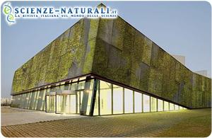 edificio-cemento-biologico