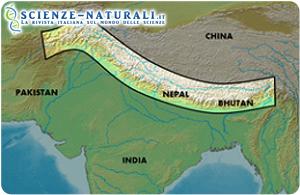 Regione himalayana. Evidenziata la regione interessata dalla lunga frattura prodotta dagli eventi sismicitra la placca Indiana e la placca Asiatica
