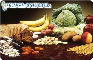 Alimenti tipici della dieta vegetariana