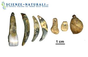 Ornamenti del corpo della Grotta du Renne realizzati dai Neanderthal, probabilmente imitando la produzione di utensili simili degli esseri umani moderni, loro vicini, forse Aurignaziani. (fonte: Nature)