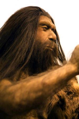 Gli ultimi Neanderthal vissero e si estinsero nella Penisola Iberica meridionale molto prima di quanto si pensasse in precedenza, circa 45mila anni fa e non 30mila, come finora si riteneva. I ricercatori spagnoli della UNED hanno partecipato alla datazione di campioni provenienti da due siti archeologici della Spagna centrale e meridionale. I nuovi dati mettono in discussione la teoria che Sapiens e Neanderthal abbiano vissuto nello stesso periodo di tempo nella Penisola Iberica meridionale durante il Pleistocene superiore.