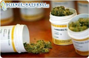 farmaci-cannabinoidi