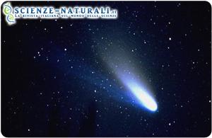 Cometa di Halley. Una cometa simile a questa avrebbe rappresentato un terreno fertile per le molecole complesse come i dipeptidi. Le comete in collisione con la Terra avrebbero trasportato queste molecole e favorito la crescita delle proteine e degli zuccheri più complessi necessari per la vita (Fonte ANSA)