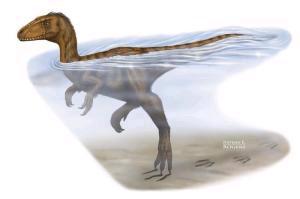 Raffigurazione di un dinosauro teropode nell'atto di nuotare