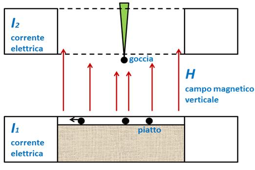 Fig. 3 - Schema dello strumento impiegato da Douady e Couder. Un campo magnetico verticale H è generato grazie alle correnti I1 e I2 nelle bobine inferiore e superiore. Il campo è d'intensità minima al centro e massima in periferia. Al centro, un meccanismo rilascia gocce di materiale ferromagnetico. Queste si magnetizzano entrando nel campo. Le gocce cadono su di un piatto contenente olio dove, grazie al fatto di tendere a respingersi tra loro e ad essere attratte verso l'esterno, si dispongono come farebbero i primordi fogliari nel caso della fillotassi spiralata. Ridisegnato da (2).