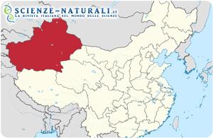 La regione del Xinjiang o Sinkiang, in Cina, dove è stata rinvenuta la nuova specie di dinosauro carnivoro