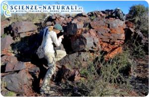Jena Johnson, un ricercatore del Caltech esamina una roccia vecchia di 2415 milioni di anni in Sud Africa, dove è stata trovata la prova di un precoce fotosistema ossidante del manganese (foto: Caltech)