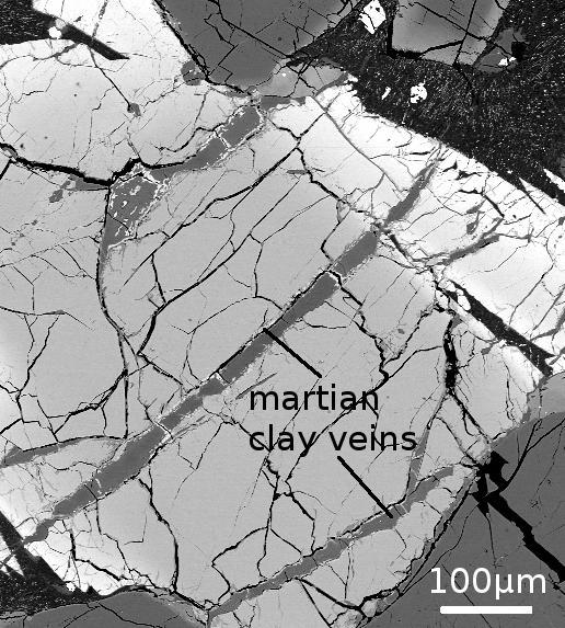 Immagine al microscopio elettronico che mostra le vene di argilla marziana, di 700 milioni di anni, contenente boro. 100 micron corrispondono ad un decimo di millimetro. (fonte: Istituto di Astronomia dell'Università delle Hawaii a Manoa)