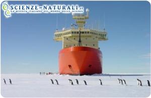 """Sfilata di pinguini sul ghiaccio di fronte alla nave da ricerca degli Stati Uniti """"Nathaniel B.Palmer"""" (fonte: John Diebold / ScienceDaily)"""