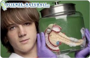 test-pancreas