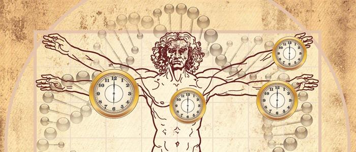 orologio-biologico