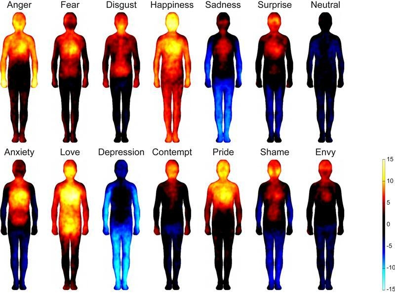 Emozioni e sensazioni corporee ecco