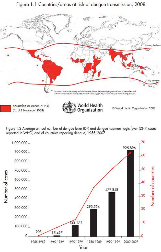 Diffusione della Dengue, dati 2008 – (Fonte WHO)