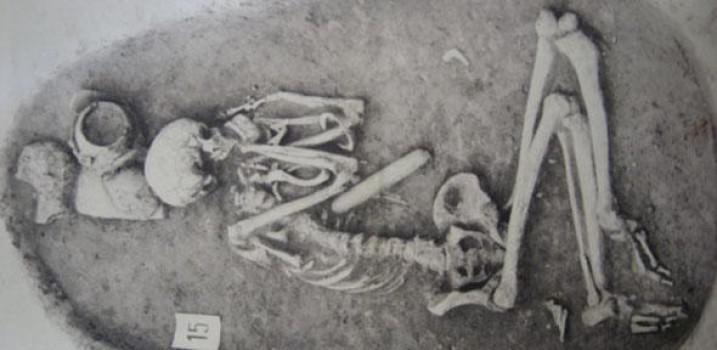Scheletro di uomo del Neolitico inferiore (35-40mila anni fa) da Vedrovice, Repubblica Ceca (credit: Moravian Museum)