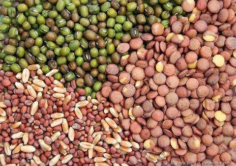 vegetable-seeds (1)