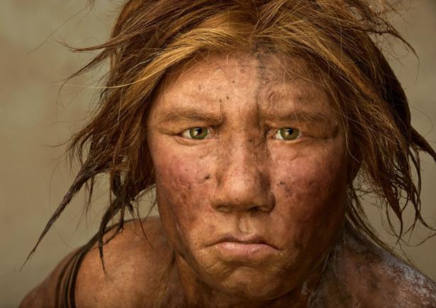 Neanderthal Museum, Germania