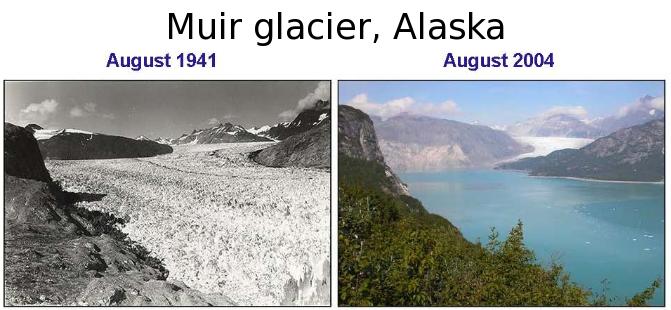 Scioglimento del ghiacciaio Muir, Alaska. (Fonte Ingdemurtas)