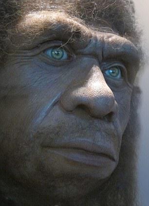 Alcune ipotesi indicano che i Neanderthal potessero avere gli occhi chiari. (Fonte Astor/Alamy)