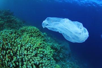 La Pacific Trash Vortex è stimata per difetto in circa 4 milioni di tonnellate. (Credit: R. Carey / Shutterstock)