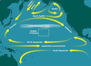 Localizzazione della c.d. zona di convergenza (Wikipedia)