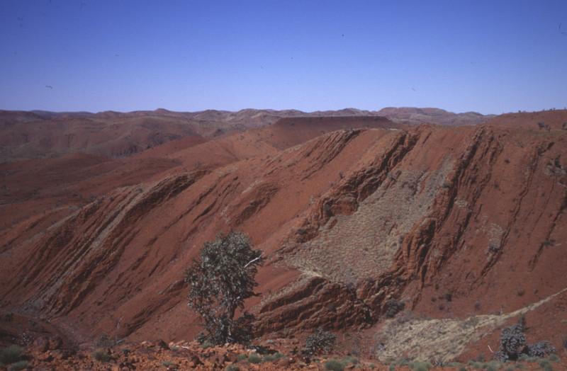 Formazioni di rocce sedimentarie di 3,2 miliardi di anni fa nel nord-ovest dell'Australia, da cui sono state rilevate prove chimiche di fissazione dell'azoto (credit: R. Buick / UW)