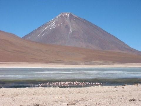 Il vulcano Licancabur, un vulcano attivo dell'arco continentale delle Ande, sul confinetra Cile e Bolivia, si erge sullo sfondo di un lago e di una colonia di fenicotteri(credit: Brian Horton)