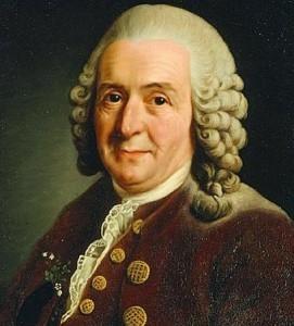 1. Carl Nilsson Linnaeus, medico, botanico e naturaista Svedese. Primo scopritore della Rosalia Alpina (1758).