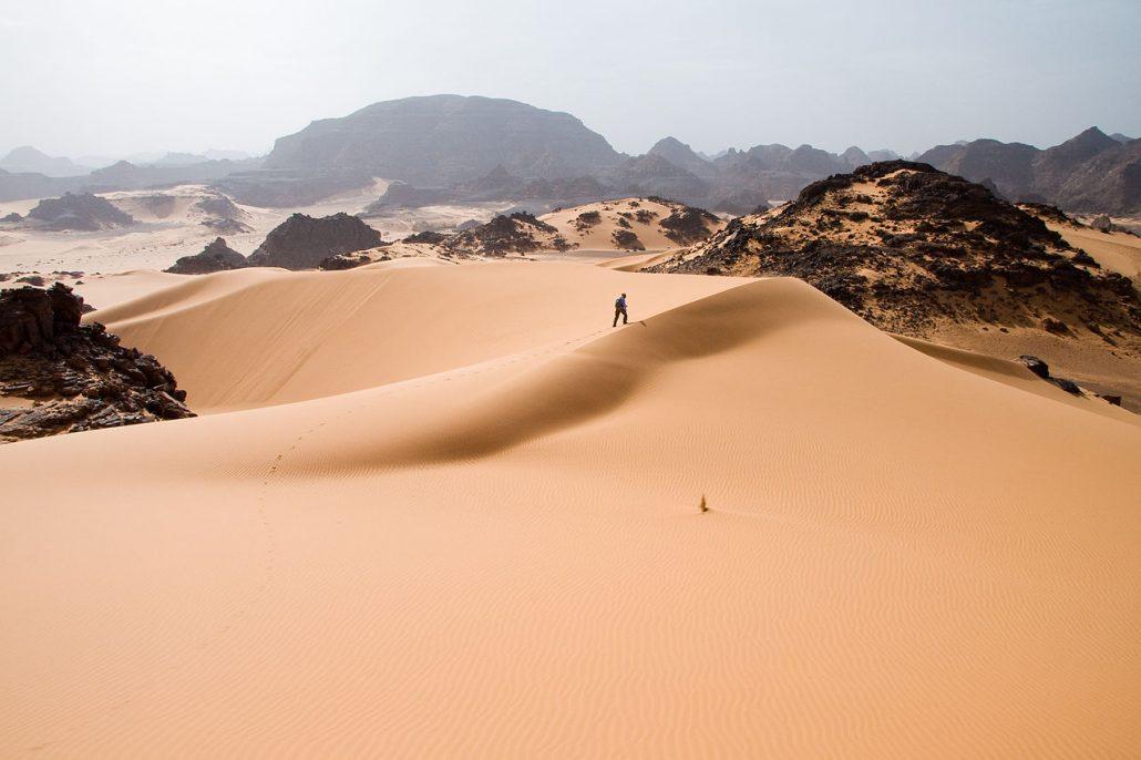 Regione del Sahara: tra vegetazione lussureggiante e arido deserto